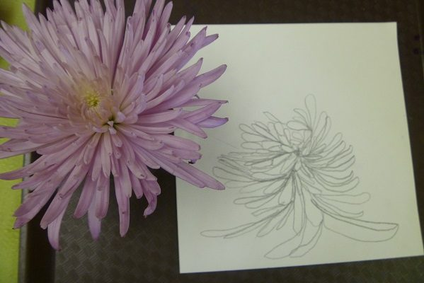 flower_drawing